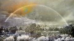 WinterLandscape (clabudak) Tags: winter sun texture nature clouds photomanipulation photoshop landscape rainbow modernart bushes creativephotography