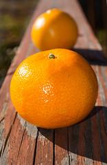 Sweet Clementine (MyImageJournal) Tags: stilllife food orange nature fruit dof citrus oranges clementines