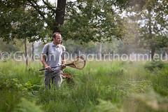 Marais Vernier-7 (Gwenn Dubourthoumieu) Tags: france nature normandie geo marais ecologie environement maraisvernier