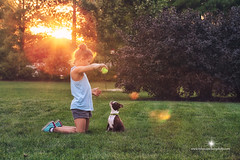 (Rebecca812) Tags: park trees sunset summer dog cute love girl grass childhood horizontal yard ball puppy fun bostonterrier outdoors togetherness child play sweet young lensflare tanktop bond nostalgic care obedience tennisball playful