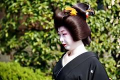 (-1- (nobuflickr) Tags: japan kyoto maiko geiko       miyagawachou   20160205dsc00626