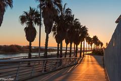 Surt el sol al Bess (Miquel Lleix Mora [NotPRO]) Tags: barcelona espaa catalunya es frum santadridebess miquellleix