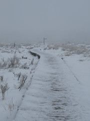 IMG_8577 (Bike and hiker) Tags: winter mist hiver sneeuw neige venn hoge hautes fagnes venen hohes botrange neur bayehon low