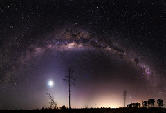 Old Moon rising under the Milky Way (inefekt69) Tags: longexposure nightphotography sky panorama tree pine clouds rural way stars ancient nikon outdoor mosaic space australia explore southern galaxy astrophotography plantation astronomy 12mm dslr milky stitched cosmos westernaustralia core cosmology milkyway southernhemisphere magellanic waningcrescent explored largemagellaniccloud greatrift gnangara microsoftice d5100