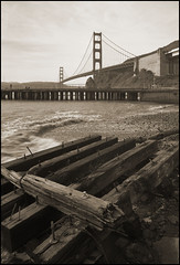 not everything is pretty (stormiticus) Tags: blackandwhite bw film analog baker kodak goldengate lf ft largeformat schneider 5x7 xtol txp canham 121mm