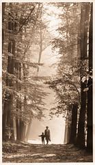 A walk in the park - Tribute to Dad (Karsten Gieselmann) Tags: wood autumn bw brown white color fall monochrome forest season mono blackwhite herbst jahreszeit sw braun wald farbe weis schwarzweis kgiesel