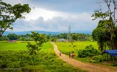 "West Bengal, Assam, Arunachal Pradesh (Paul Nicodemus) Tags: travel people mountains rain clouds landscapes skies azure adventure journey solo odyssey assam himalayas valleys unplanned tawang natives bomdila tezpur ""westbengal"" ""arunachalpradesh"" ""bumlapass"" ""selapass"" ""paulartography"" ""paulnicodemus"