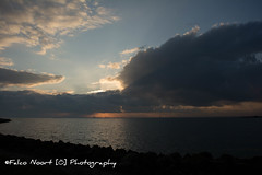 Zonsodergang (falconoortphoto) Tags: zonsondergang nikon nederland flevoland almere oostvaardersdijk nikond5200 falconoort