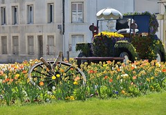 Vertus (Marne) - Parterre fleuri (Morio60) Tags: champagne 51 marne vertus