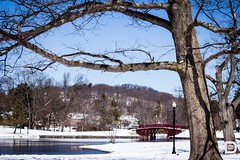 Elm Park Worcester 04.05.2016 (DDUONGPHOTOGRAPHY) Tags: snow landscape pond massachusetts newengland april worcester winterweather winterlandscape elmpark snowinapril elmparkbridge welcometoworcester