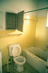 Crappy (IAmTheSoundman) Tags: ohio abandoned animals yellow tile bathroom apartments takumar sony 28mm toilet dirty poop messy bathtub urbanexploring efficiency a99 jakebarshick