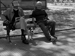 just a little smile (rocami19) Tags: leica dlux5