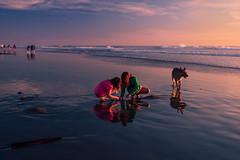 013_2719: Ocean Beach (Shawn-Yang) Tags: ocean blue girls sunset dog reflection beach girl san francisco pretty lovely