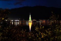 Light it up! (.GABRIELLE.) Tags: christmas xmas city summer lake reflection southamerica brasil riodejaneiro night canon 50mm holidays lagoon christmastree ef50mmf14 xmastree primelens 5dmarkiii