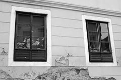 windows ben (brendagiannello) Tags: blackandwhite stilllife architecture croatia zagreb oldwomen inlove flickrlove urbanlife lanscapes urbanstreet urbanstyle