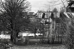 ... (Hen's March) Tags: leica germany iii summicron m2 vers 2016 5020