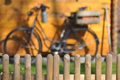 HFF (nirak68) Tags: fence garden deutschland spring zaun garten fahrrad frhling deko hermannsburg 098366 niedersachsenlandkreiscelle c2016karinslinsede