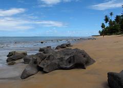 Japaratinga Beach (Luiz Carlos Targino Dantas) Tags: praia beach canon al litoral alagoas g12 japaratinga canong12 praiadejaparatinga
