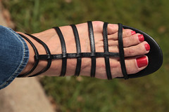 Demetria (IPMT) Tags: red west sexy feet that foot rojo zoya warm toes painted nine polish creme vermelho poppy pedicure about sandalia geranium sandal toenails strappy gladiator toenail geranio pedi gladiador demetria