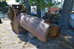 DS_TractionEninge_1_McLeansIsland_09April2016 (nzsteam) Tags: price train island traction engine railway scene steam engines locomotive boiler boilers mcleans sawmilling