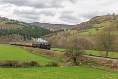 Steady Progress (4486Merlin) Tags: wales europe unitedkingdom transport steam railways llangollenrailway gbr denbighshire heritagerailways 80072 exbr brstd4mt264t garthydwreastofglyndyfrdwy alongcambrianlinesgala