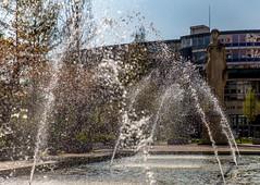 Strasbourg - facult de droit (Emmanuel Cattier -) Tags: light france europa europe lumire arts culture strasbourg alsace esplanade continent jetdeau humanit plante basrhin facultdedroit reprsentations