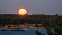 IMGP3008 copy (Tapio Kekkonen) Tags: summer moon beach sunrise sailing hanko subset bech finlad