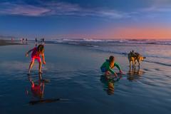 013_2716: Ocean Beach (Shawn-Yang) Tags: ocean girls sunset dog reflection beach girl san francisco pretty lovely