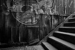20160430_DP0Q2423 (NAMARA EXPRESS) Tags: street railroad bridge blackandwhite monochrome japan wall stair outdoor fine sigma railway osaka nakatsu foveon quattro dp0 underguard namaraexp