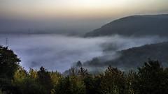 early morning mist (Blende1.8) Tags: autumn trees mist fog sunrise canon germany landscape eos forrest herbst 10d landschaft wald bume sonnenaufgang ruhrgebiet tal ruhrtal earlymorningmist frhnebel frhdunst carstenheyer