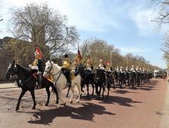 blues & royals-household cavalry mounted regiment-freedom of the city of london parade /20/04/2016/ (philipbisset275) Tags: unitedkingdom centrallondon bluesroyals englandgreatbritain householdcavalrymountedregiment themallcityofwestminster 20042016