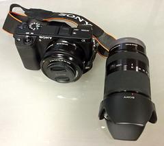 Sony A6300 (archer10 (Dennis) (72M Views)) Tags: canada novascotia sony free dennis jarvis iamcanadian 18200mm mirrorless freepicture 1650mm dennisjarvis a6300 archer10 dennisgjarvis