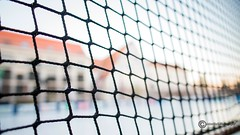 Network for real estate sharks (anton_zach) Tags: hai netz abstrakt immobilien immobilie immobilienhai