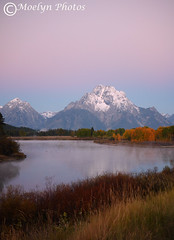 Misty Dawn at Oxbow Bend (moelynphotos) Tags: pink autumn sunrise reflections dawn fallcolors snakeriver mountmoran grandtetons oxbowbend moelynphotos