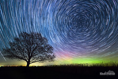 The Spin Cycle (kevin-palmer) Tags: november blue autumn red sky tree green fall yellow night dark stars illinois oak colorful purple spin north tracks aurora starry northernlights auroraborealis startrails lightpollution polaris rotate northstar 2015 geomagneticstorm kevinpalmer campgrove pentaxk5 samyang10mmf28