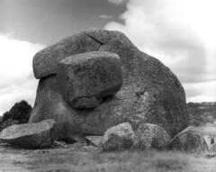 Granite Tor, Guyra (original photographs) Tags: film kodak tmax voigtlander australia photograph granite 4x5 100 tor agfa largeformat heliar viewcamera guyra tachihara gelatinsilver