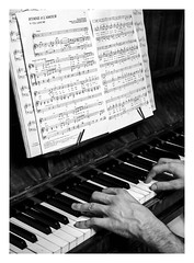 L'hymne à l'amour  Edith Piaf (objet introuvable) Tags: valentine valentines valentinesday flickrfriday bemine blackandwhite bw nb noiretblanc piano love piaf edith hymne lumixgx8 panasonic