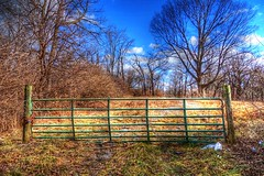 Green fence (mrgraphic2) Tags: fence indianapolis indiana hdr sonyrx100m2