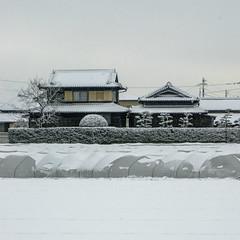 DSC02187sq (IainInJapan) Tags: roof winter house snow japan farmhouse japanese sony traditional a7r
