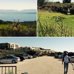 Old Stomping Grounds (Vegan Feast Catering) Tags: ocean home palosverdes