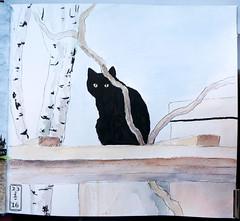 Dunkel (Sigrid Frensen) Tags: black cat garden sketch drawing sketchbook watercolour dunkel pergola