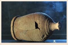 vaso di coccio (eliobuscemi) Tags: palermo antico vaso zisa coccio