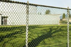 Schoolground (w.d.worden) Tags: school canada john oliver columbia secondary schoolvancouver boardvancouverbritish