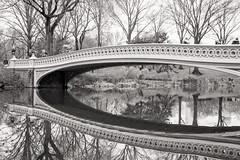 Reflection_7375 (adp777) Tags: nyc newyorkcity centralpark manhattan