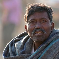 Pushkar-20151121-08.12.36 - 03389 (Swaranjeet) Tags: november portrait people india indian ethnic pushkar rajasthan mela rajasthani 2015 camelfair animalfair