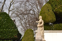 Isaas e as camlias (TheManWhoPlantedTrees) Tags: arquitetura stone architecture isaiah camellia braga profeta granit isaas bomjesusdomonte camlias bomjesusdebraga arquitecturaportuguesa nikond3100 tmwpt