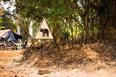 Warning Elephants! (kitsunekuma) Tags: travel red orange elephant sign warning cambodia dirt siem reap roadsign dust angkor wat travelphotography canon100d canon40mmf28stm