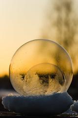 Frozen bubble (Konalley) Tags: winter sunset snow cold ice closeup frozen bokeh vibrant iced soapbubble frozenbubble transculent nikond7000 nikonmicronikkor105mmf28af