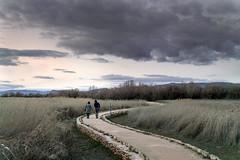 _MG_9042-8.37 (serafin_moreno_alvarez) Tags: espaa luz nature canon eos mujer earth paisaje e z realismo albacete serafin flickraward flickraward extraordinarilyimpressive