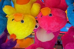 Prizes (iansand) Tags: stuffedtoy prize eastershow fluoro